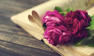 Διάβασμα: μια πολύτιμη Δραστηριότητα